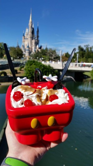 Now this is a good looking snack - Photo by Disney Photo Snapper