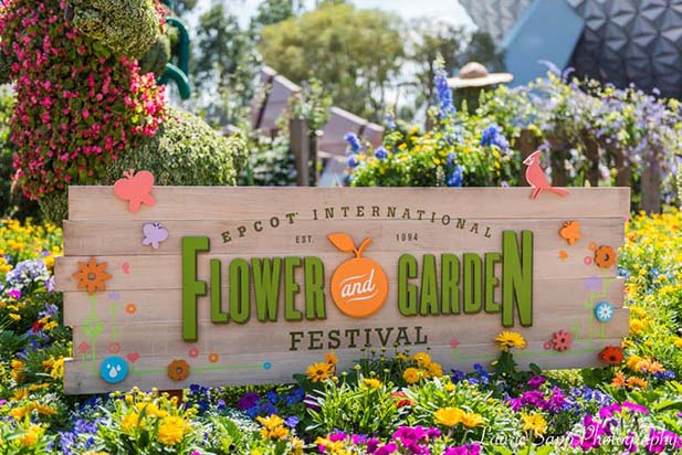 Dad's 5 best weeks to visit WDW include the Epcot International Flower and Garden Festival