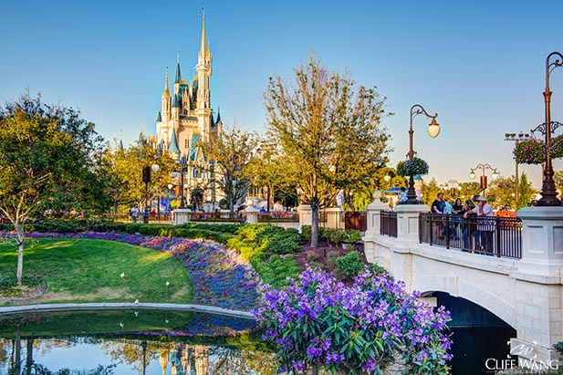 Visit the Magic Kingdom in the spring