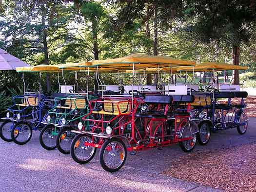 Surrey bikes at Port Orleans Resort