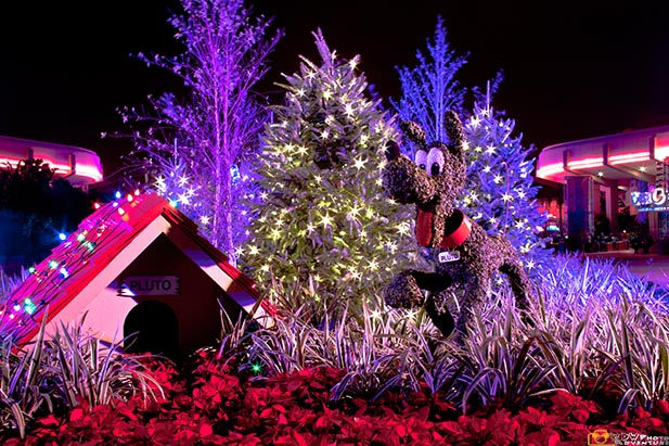 A christmas Pluto topiary at EPCOT