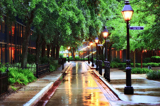 Rain at the Port Orleans wets the streets