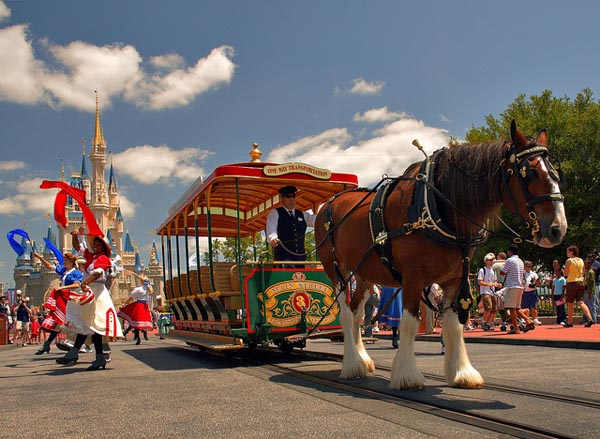 Disney World Transportation from yesterday. A horse drawn carriage on Main Street USA.