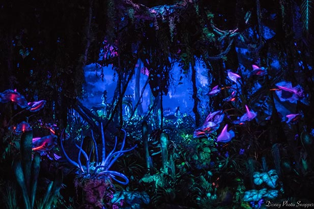 The bioluminescent forest in Flights of Passage at night