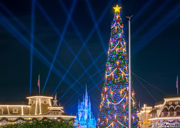 The Christmas tree on Main Street at the Magic Kingdom
