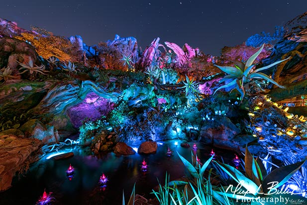 The New Pandora section at night