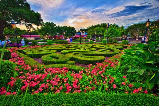 the garden in France is where you smell the roses when you are in Disney World for the perfect length of time