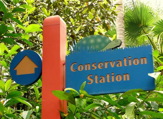 The Conservation Station sign at Rafiki's Planet Watch