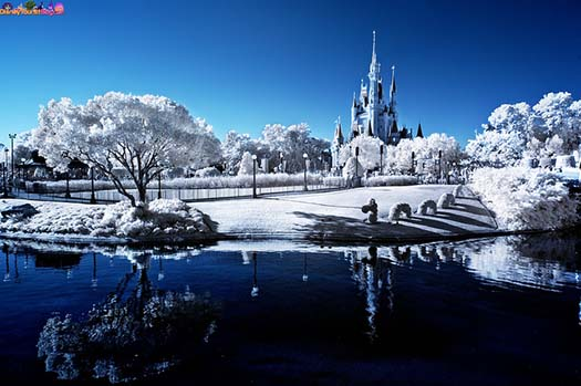 Cinderella Castle in the background with what looks like snow all around