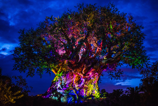 tree of life awakenings