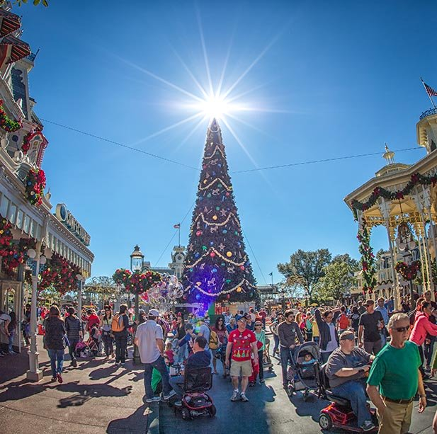 The Magic Kingdom Christmas Tree with crowds around it