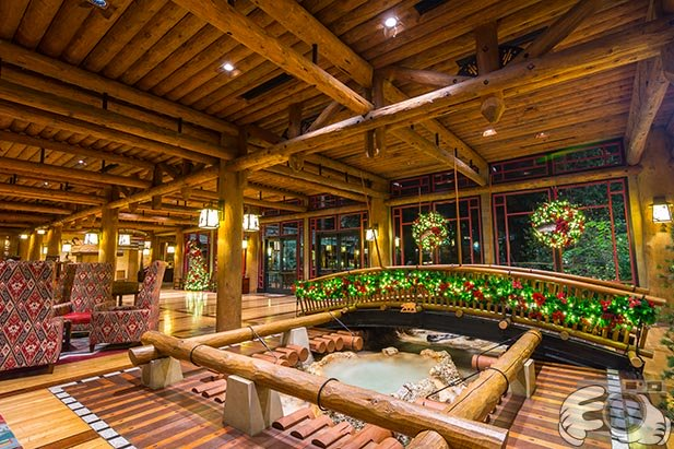 The hot spring bubbling up in the lobby of the Wilderness Lodge