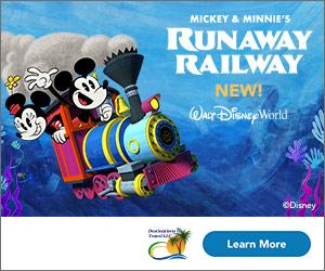 Destinations to Travel's latest Disney ad