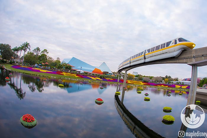 If you upgrade to Park Hoppers you can jump over to EPCOT for the Flower and Garden Festival